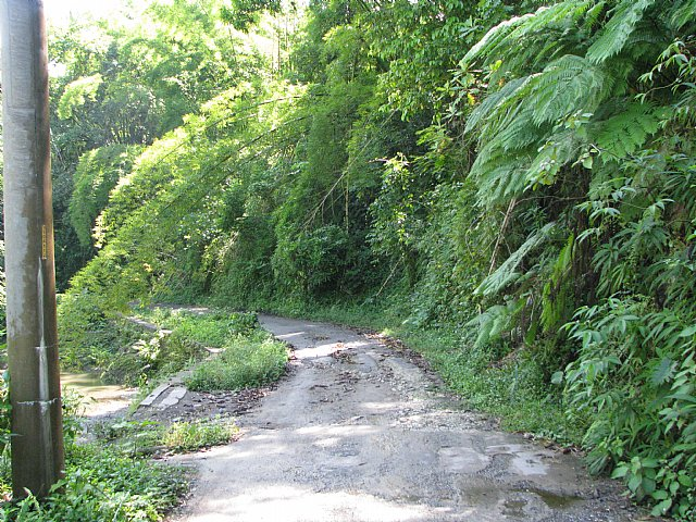 Commercial/farm land For Sale in Riversdale St Catherine ...