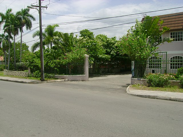 half way tree singles Half way tree is a neighbourhood in the city of kingston, jamaica it is the parish capital of st andrew half way tree is served by the kingston 10 post office.