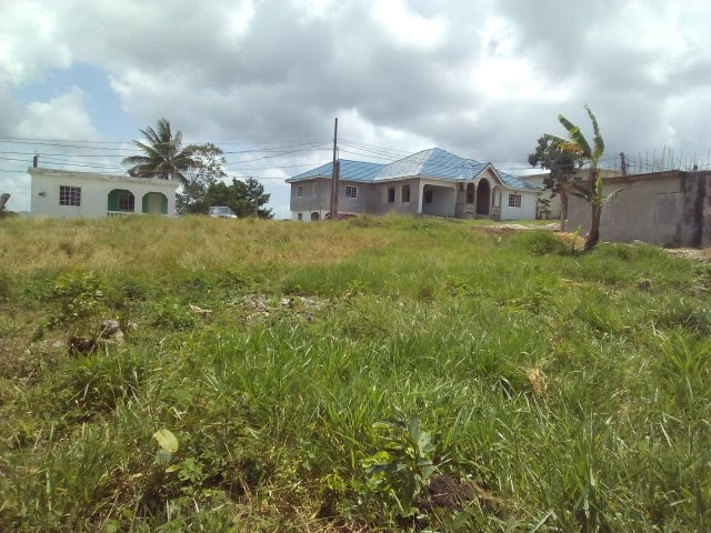 Residential Lot For Sale In Mandeville Manchester Jamaica