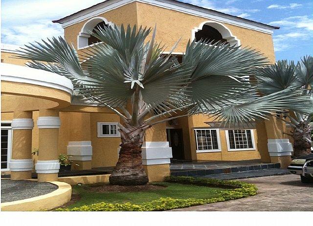 House For Lease Rental In Cherry Gardens Kingston St