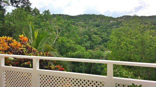 Apartment for lease rental in spring gardens st james jamaica propertyads jamaica for Spring garden jamaican restaurant