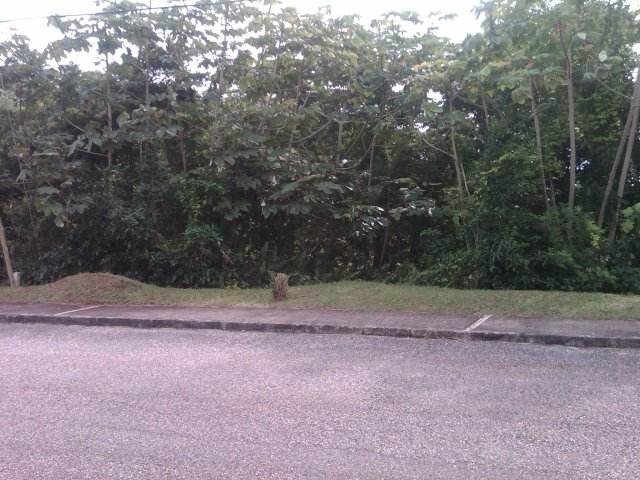 Residential lot For Sale in Moorlands Estate Mandeville ...
