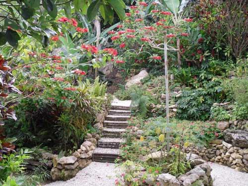 House for sale in spring garden st james jamaica propertyads jamaica for Spring garden jamaican restaurant
