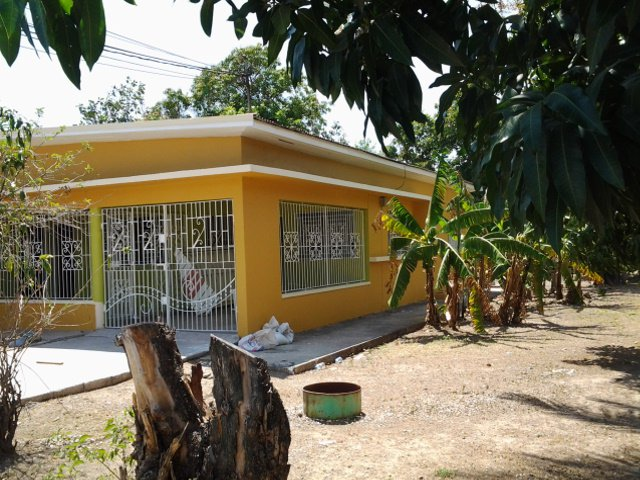 house for lease  rental in patrick city  kingston    st