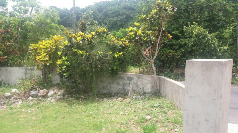 browns town latino personals Brown's town is one of the principal towns in st ann, jamaica in 1991, its  population was  savanna-la-mar seaford town seaforth siloah spanish  town southfield stonehenge trinity ville ulster spring wakefield white  house.