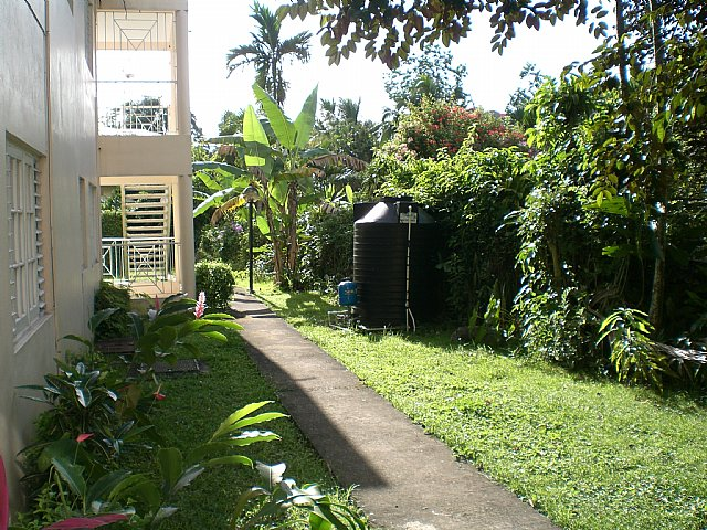 Apartment For Rent in Stony Hill, Kingston / St  Andrew