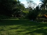 Lot 21, St. Thomas, Jamaica - House for Lease/rental