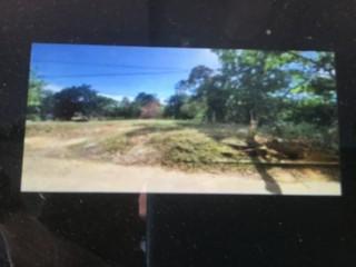 Residential lot For Sale in Sillingston, St. Elizabeth, Jamaica