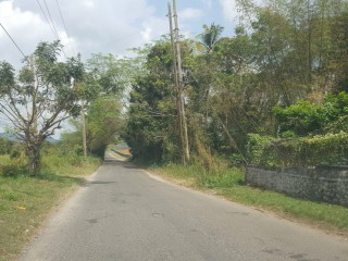 Commercial/farm land  For Sale in Linstead, St. Catherine, Jamaica