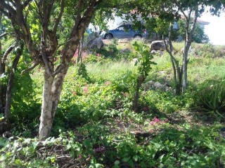 Residential lot For Sale in LAURISTON, St. Catherine, Jamaica