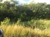 New Forest, Manchester, Jamaica - Residential lot for Sale