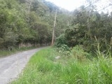 Coopers Hill Rd, Kingston / St. Andrew, Jamaica - Residential lot for Sale