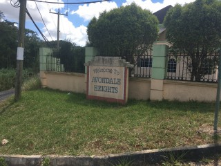 Cedar Grove Mandeville Manchester, Manchester, Jamaica - Residential lot for Sale