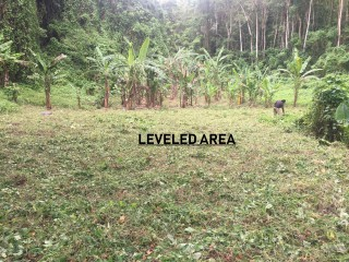 Commercial/farm land  For Sale in Cambridge, St. James, Jamaica