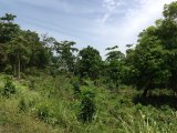Gibraltar, St. Mary, Jamaica - Residential lot for Sale
