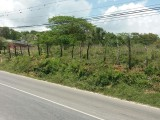 Whitehouse Commercial Lot  ID 1778 HCA789, Westmoreland, Jamaica - Commercial/farm land  for Sale