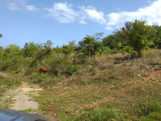 Residential lot For Sale in Cardiff Hall, St. Ann, Jamaica