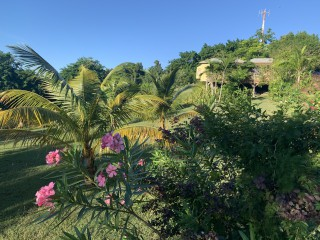 1 bed 1 bath Apartment For Rent in Richmond Hill, St. James, Jamaica