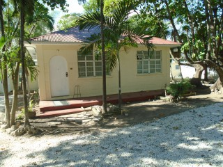 7 Raviana Road, Kingston / St. Andrew, Jamaica - Apartment for Lease/rental