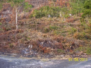 Coopers Hill, Kingston / St. Andrew, Jamaica - Residential lot for Sale