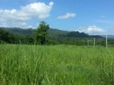 Heathfield  Linstead, St. Catherine, Jamaica - Residential lot for Sale