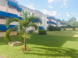 1 bed 1 bath Apartment For Sale in Cricklewood Apartment, Kingston / St. Andrew, Jamaica