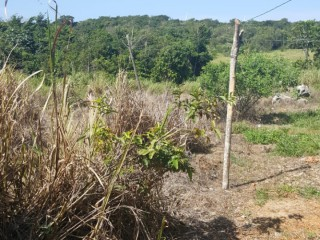 Stones Hope District Manchester, Manchester, Jamaica - Residential lot for Sale
