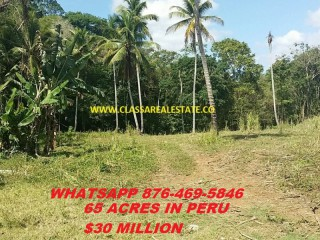 Commercial/farm land  For Sale in PERU, Trelawny, Jamaica