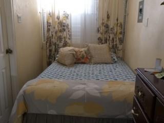 Studio Apartment For Rent in Mona Kgn 6, Kingston / St. Andrew, Jamaica