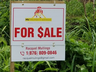 For Sale in Hayfield, Portland, Jamaica