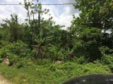 UNDER OFFER Withhorn, Westmoreland, Jamaica - Residential lot for Sale