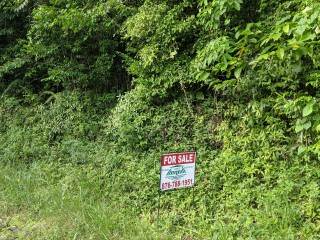 Residential lot For Sale in Red Hills, Kingston / St. Andrew, Jamaica