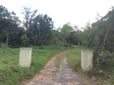 Mandeville MLS 18346, Manchester, Jamaica - Residential lot for Sale