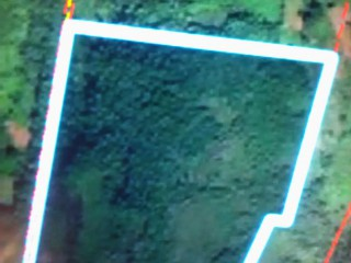 Commercial/farm land  For Rent in Rural Retreat, St. Ann, Jamaica