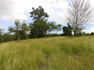 Residential lot For Sale in Exchange Mile End, St. Ann, Jamaica