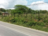 WHITEHOUSE MAIN ROAD LOT  ID 1778 HCA789, Westmoreland, Jamaica - Commercial/farm land  for Sale