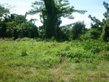 Great House Circle, St. Mary, Jamaica - Residential lot for Sale
