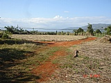 No Reasonable Offer will be refused, St. Elizabeth, Jamaica - Residential lot for Sale