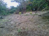 Fairmont hill top, Westmoreland, Jamaica - Residential lot for Sale