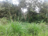 Kingston 19, Kingston / St. Andrew, Jamaica - Residential lot for Sale