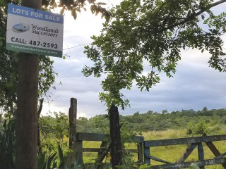 Commercial/farm land  For Sale in Trelawny, Trelawny, Jamaica