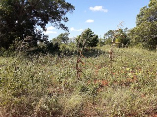 Residential lot For Sale in Nain, St. Elizabeth, Jamaica