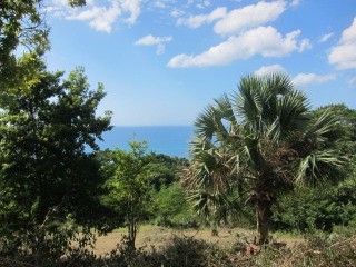 Residential lot For Sale in cullodenwhitehouse, Westmoreland, Jamaica