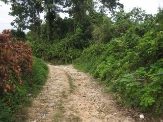 3 bed 1 bath Residential lot For Sale in Colegate Ocho Rios St Ann Jamaica, St. Ann, Jamaica