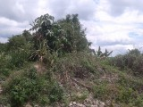 Lot 188 Industry PenRetreatPhase 2, St. Ann, Jamaica - Residential lot for Sale