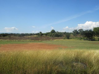 Residential lot For Sale in Bustamante Highway, Clarendon, Jamaica