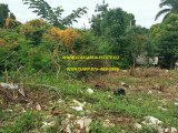 WHITEHALL, Westmoreland, Jamaica - Residential lot for Sale