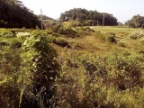 Residential Lot MLS20024, Manchester, Jamaica - Residential lot for Sale