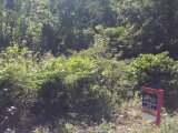 Rockmore Galina, St. Mary, Jamaica - Residential lot for Sale