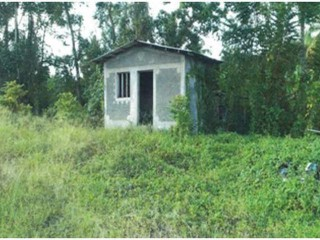 Windsor and Seamans Valley, Portland, Jamaica - Commercial/farm land  for Sale